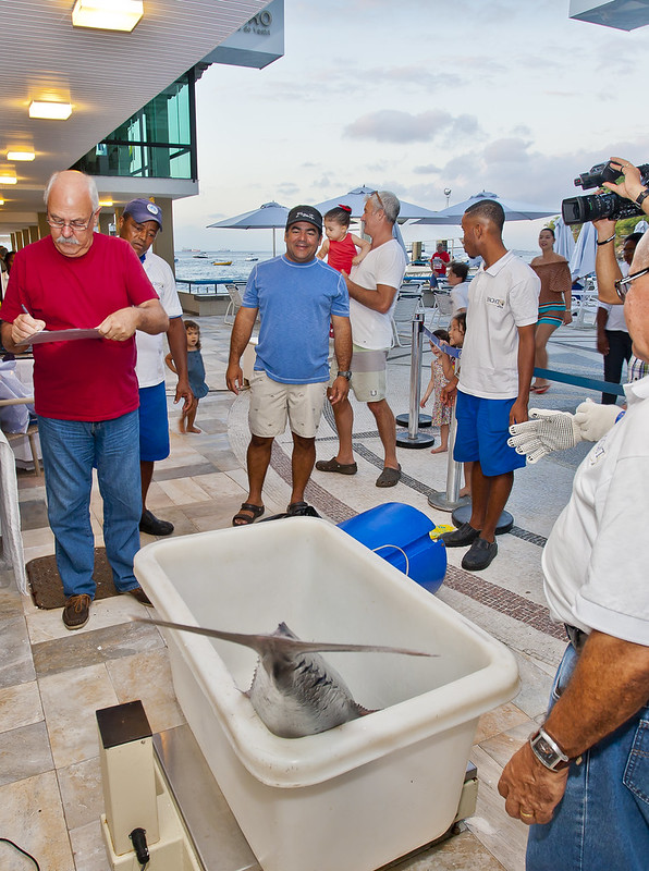 Torneio do Yacht Clube da Bahia de Pesca