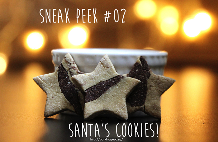 xmas-advent-dog-cookies-2 - Treats for dogs this Christmas 2015