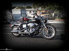 2015-11-28_PB281159_st.pete powersports Biker Bash_