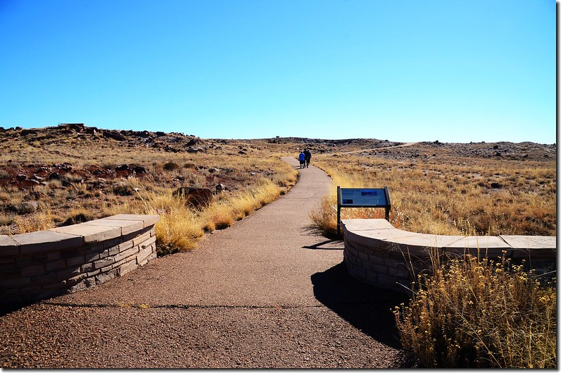 Agate House  Trail, Petrified Forest National Park 1