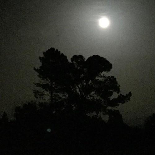 Así está la luna! #luna #lua #moon #portugal #aveiro #oliveiradobairro