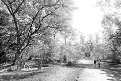 Parque Natural Chico Mendes, Sorocaba