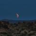 Super moon, Mojave. by Lynn_L