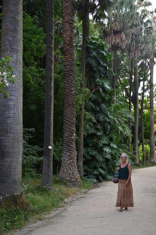 lisboa - jardim botanico lisboa