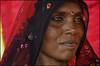 Papu.  Pushkar by Claire Pismont