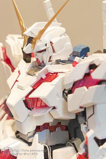TGP2015_HSM-18