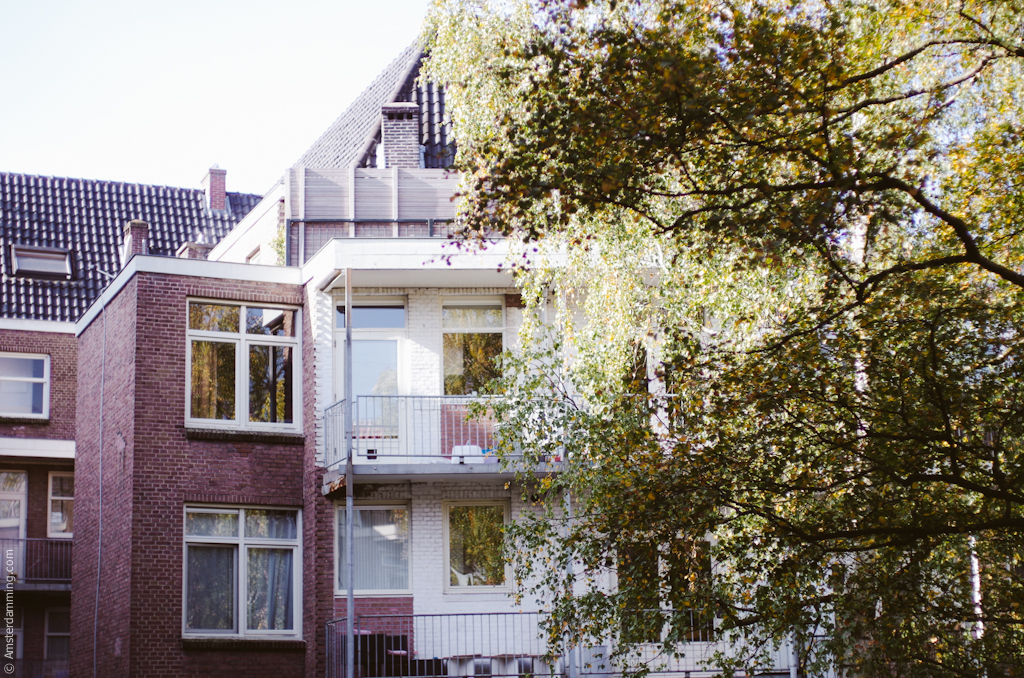 Amsterdam, Interior