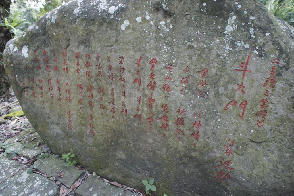雲林縣古坑鄉華山生態之旅 (20)