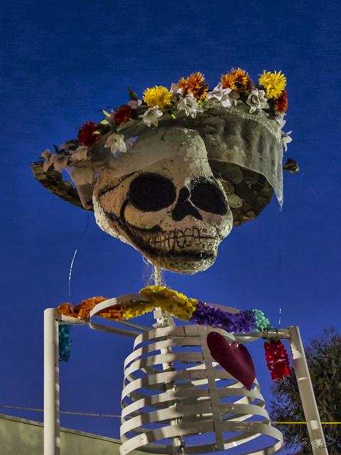 Downey Día de Muertos skulls