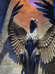 Rise Up Like a Phoenix