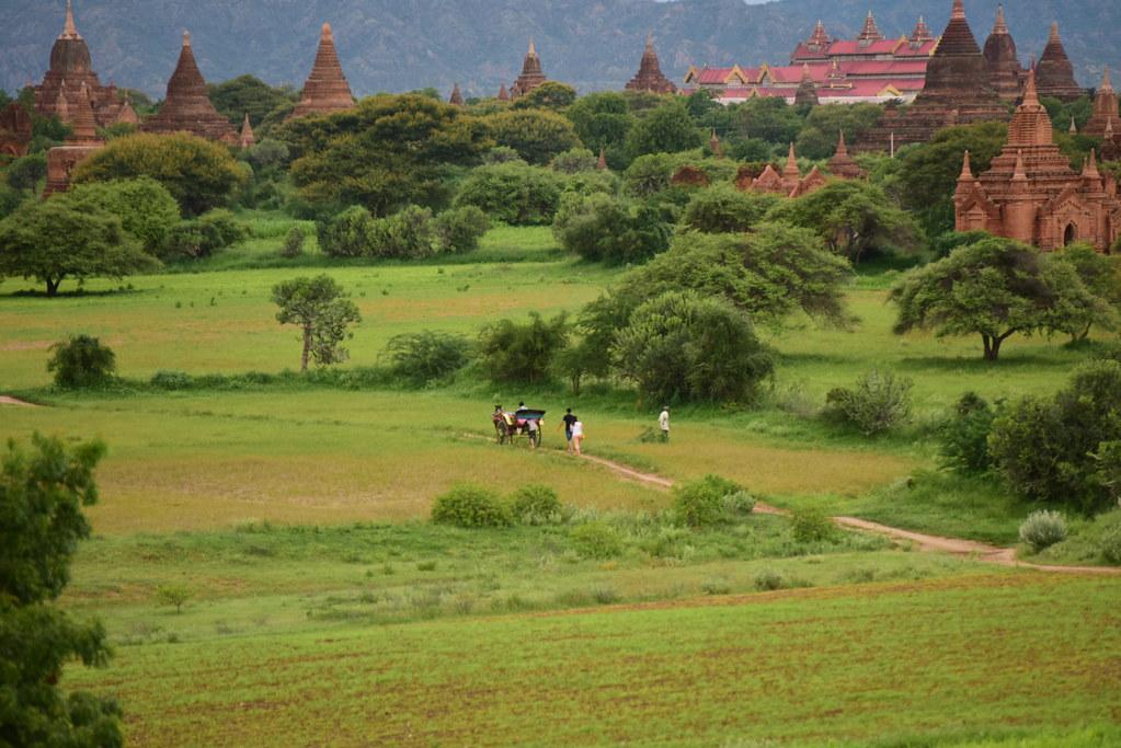 Bagan, Myanmar (Birmania) D810 1958