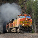 BNSF 4935 E - West Glacier, MT by CEFX-1036