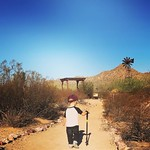 Hiking buddy 🌵 by bartlewife