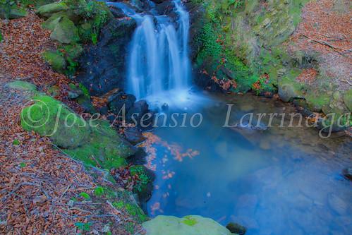 Parque Natural de Gorbeia #DePaseoConLarri #Flickr -2851