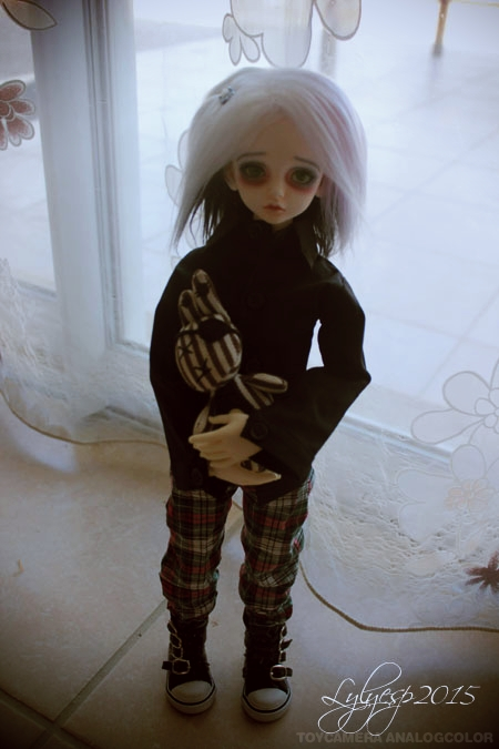 [ Shin - KDF Bory ] Cheshire chaton ? (23/12/2018) 20511859532_4c7e406364_o