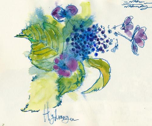 Sketchbook #91: Hydrangea