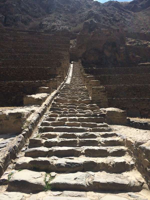 Stairs up the terraces