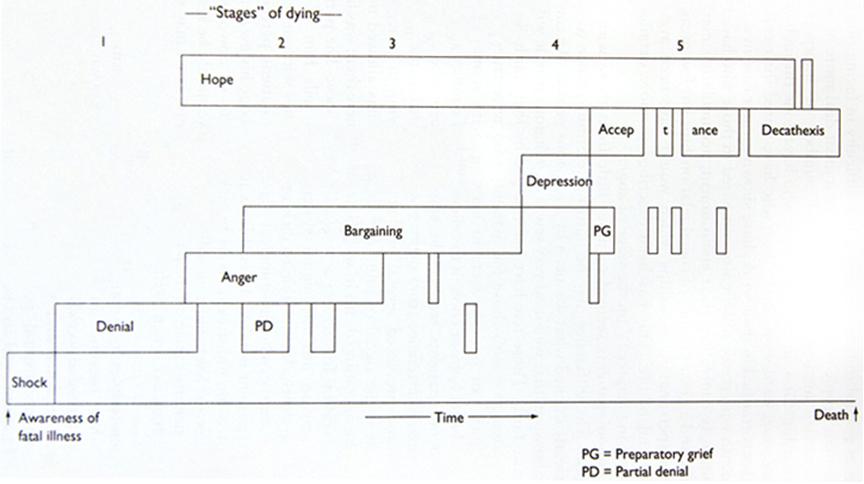 Elisabeth Kübler-Ross 临终的5个阶段