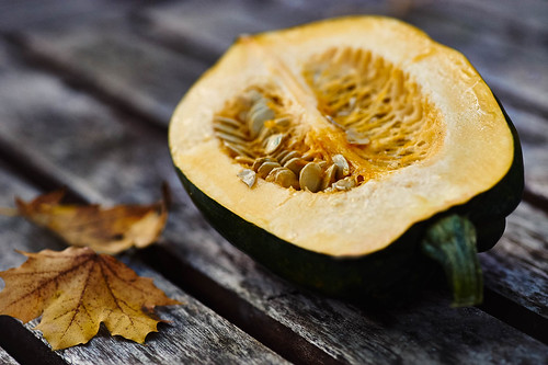 Food Photography | Ontario Squash