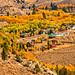 Autumn in Aspendell, California by jthight