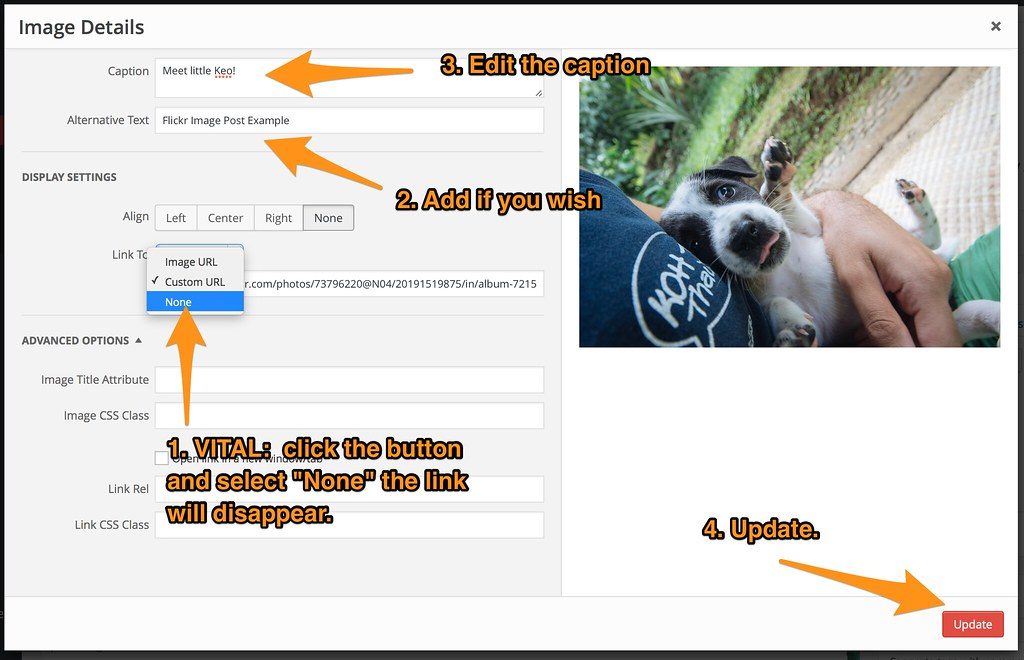 How To Use Flickr To Host Your WordPress Blog or Website Images