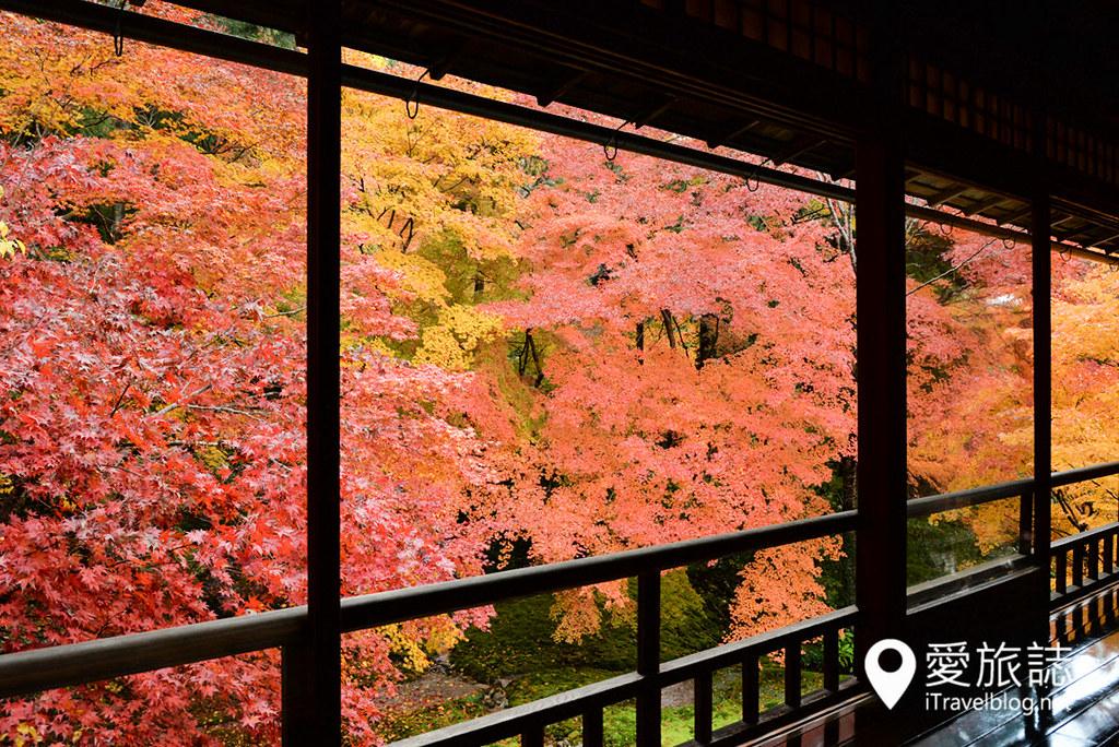 京都赏枫景点 琉璃光院 31