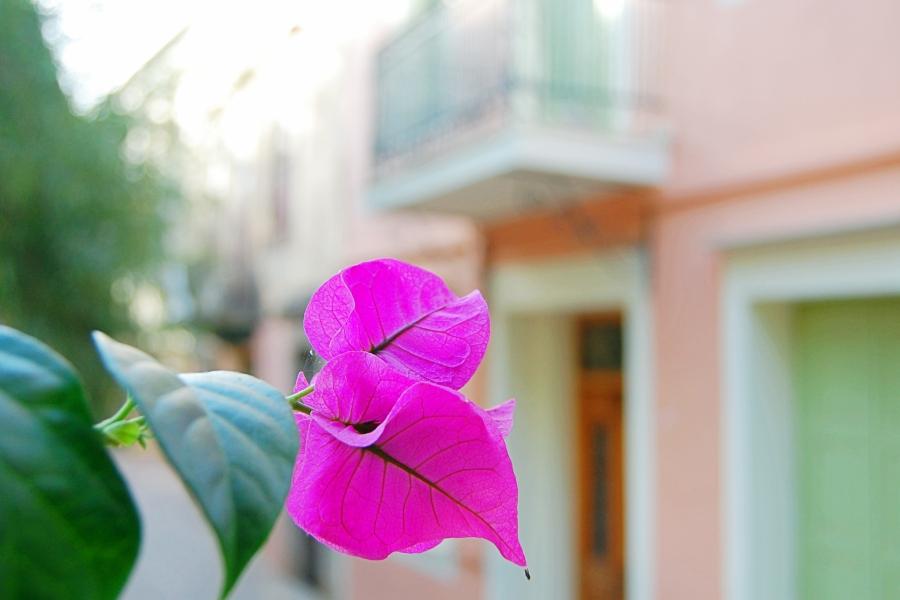 Greece-Crete (19)