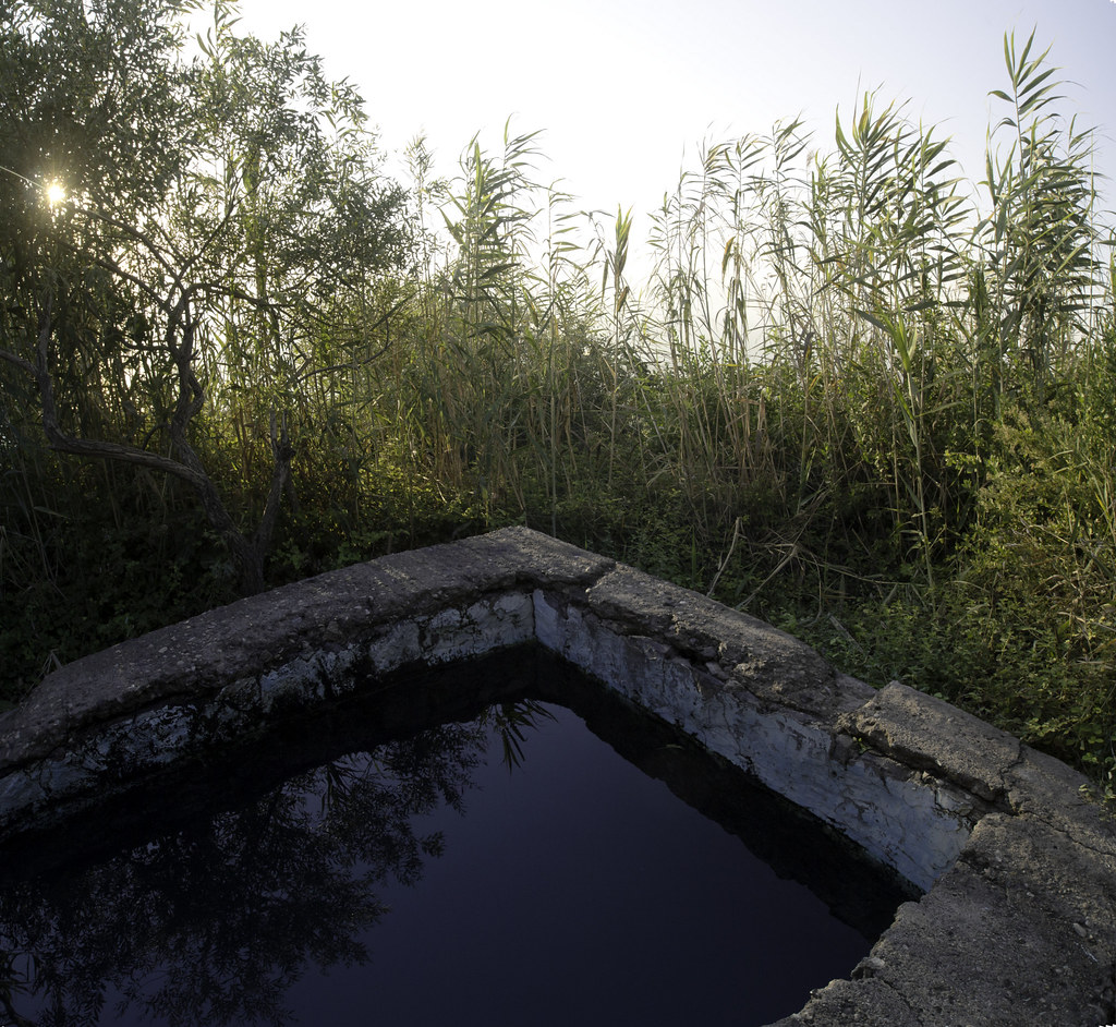 Little pool with natural water in the kibbutz Kfar Haruv, Tiberias