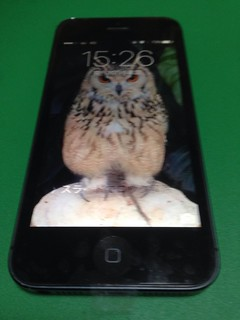 20_iPhone5のフロントパネル液晶割れ