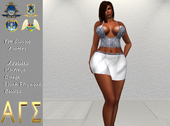AGS INC. Womens Cropped Top & skirt with Appliers
