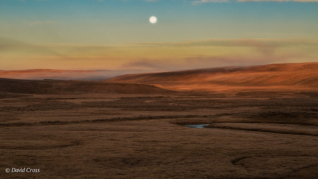 Morning Moon Over Yellowstone