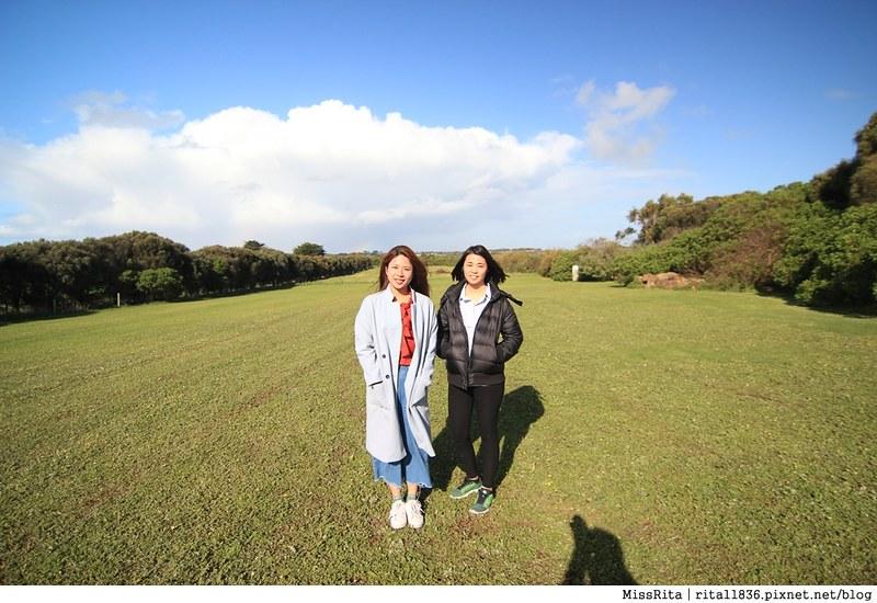 KKDAY 墨爾本自由行 melbourne gowesttours kkDAY墨爾本 墨爾本企鵝 澳洲自助 墨爾本自助 菲利浦島 菲利浦島交通 墨爾本必去 墨爾本酒莊 月光野生動物 Nobbies 墨爾本企鵝歸巢 墨爾本一日遊 菲利普島一日遊,小企鵝歸巢遊行77