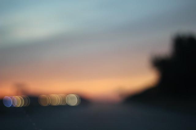 IMG_0349, Canon EOS REBEL T2I, Canon EF 50mm f/1.8 II