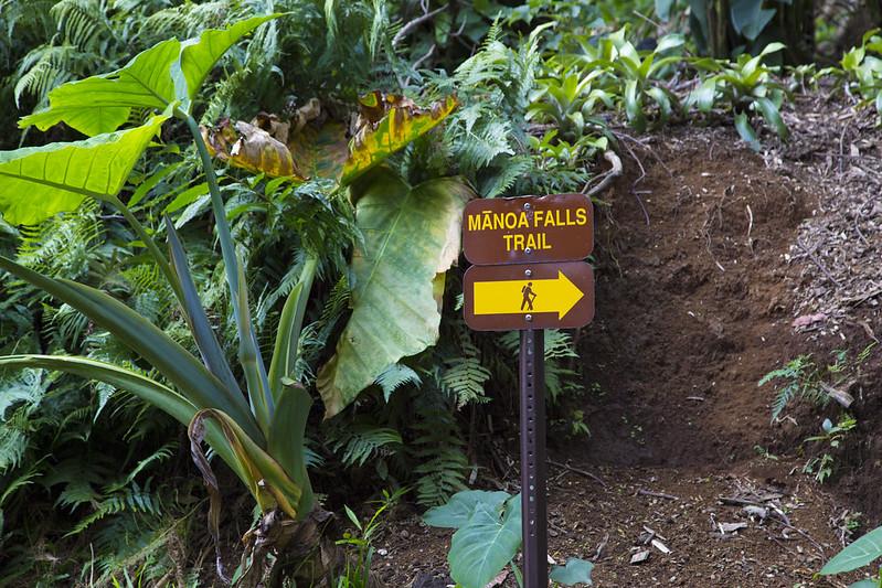 Hawaii_116