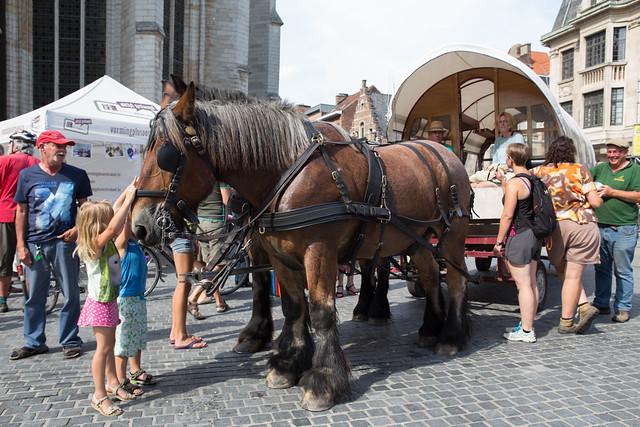 Leuven autovrij 2015