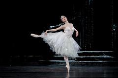 Fumi Kaneko as a Swan in Swan Lake, The Royal Ballet