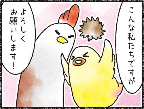 自己紹介_4