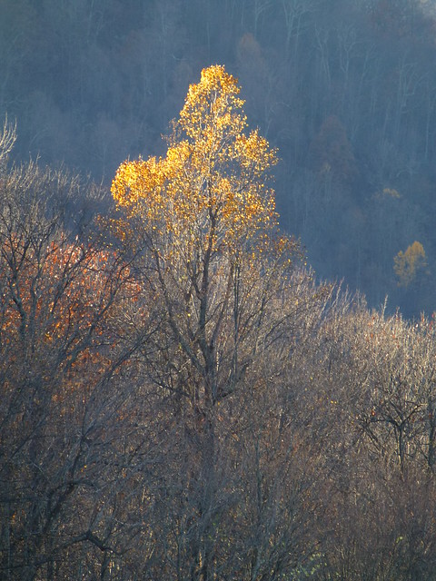 Southwest Virginia (November 2015)