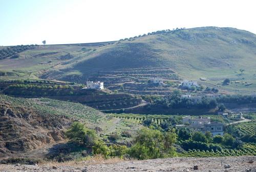 asia jordan pella الأردنّ بيلا πέλλα