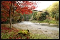 日本滋賀_多良峡森林公園.09