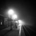 Three to Midnight by brianloganphoto