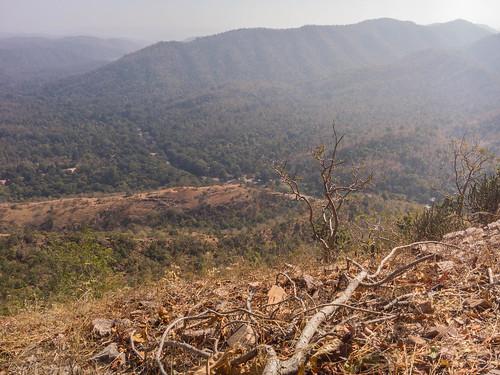 india river hill polo gujarat reserveforest bandhana sabarkantha harnav bimakhed