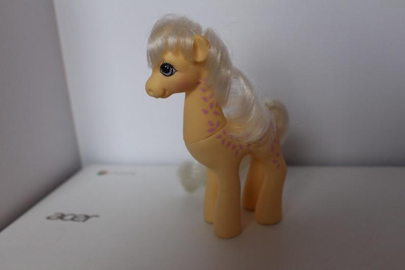 My Little Pony Friend