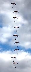 Falcons Fall In