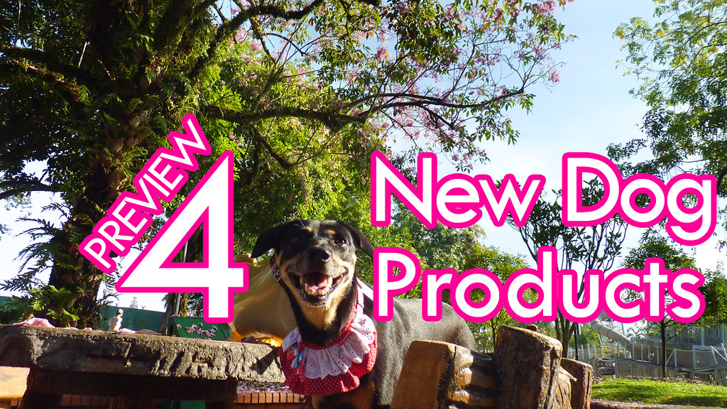 Preview - 4 new dog products