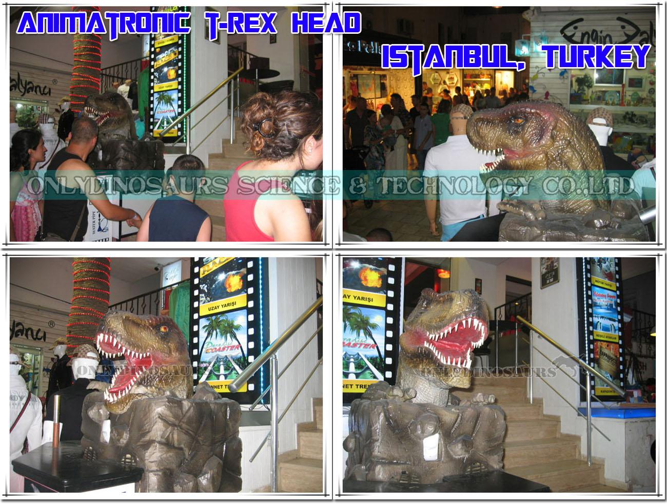 Robotic Tyrannosaurus Rex Head
