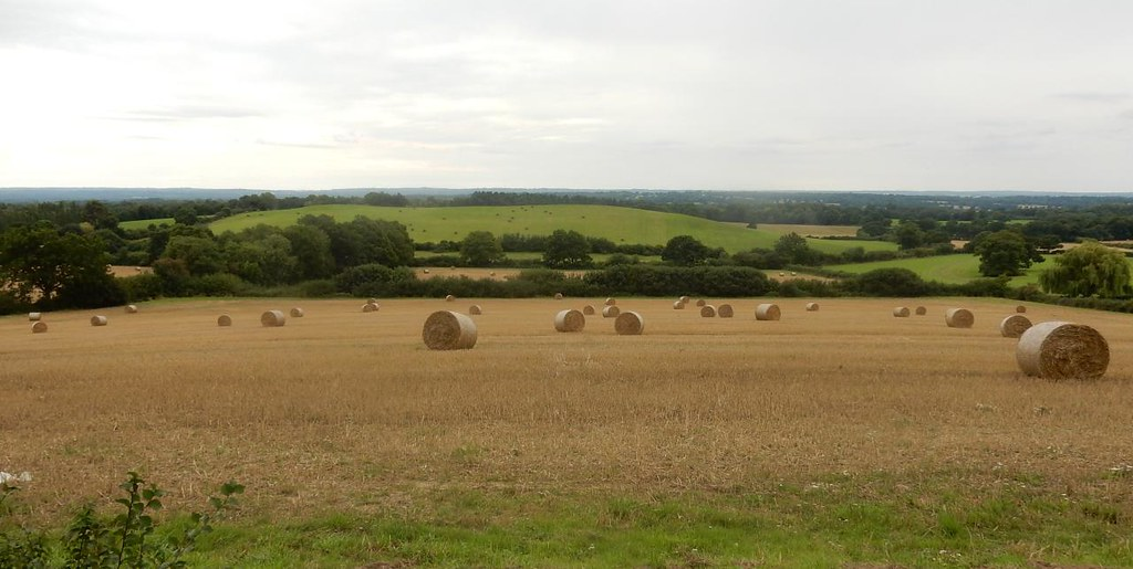 Haybales Nutfield to Oxted