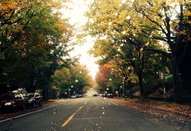 Cherry Street This Morning