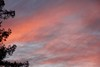 For the last few nights we got some great eveing sky colors.