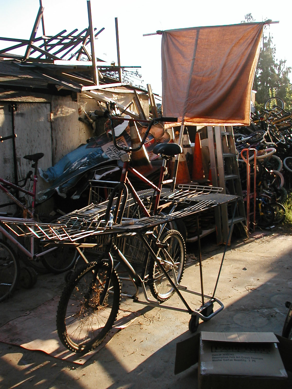 bike ship